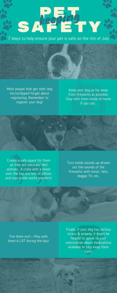 pet safety july 4th