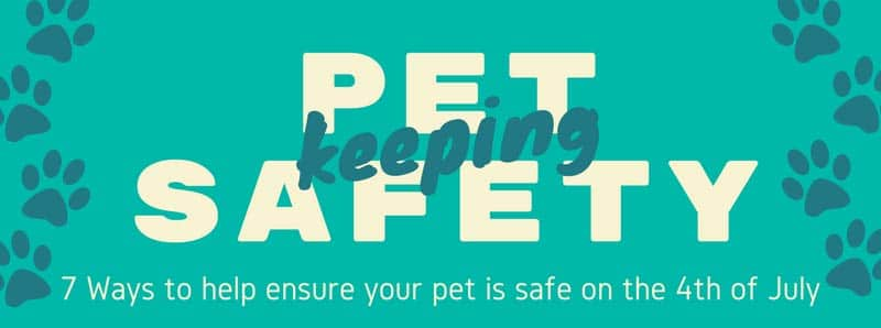 pet safety july 4th featured