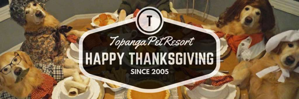 happy-thanksgiving-from-topanga-pet-resort