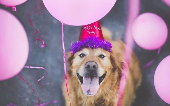 happy-new-year-tpr